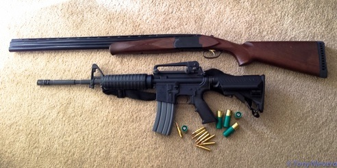 A-Preppers-Guide-guns-introphoto