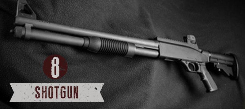 A-Preppers-Guide-guns-photo8