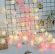 Mood Light - Rose String Lights